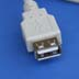 USB A Female Connector
